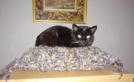 CROCHET CAT BED PATTERNS | Crochet Patterns